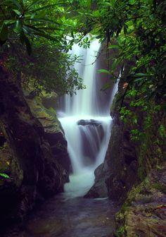 Duggers Creek Falls on the Blue Ridge Parkway at Linville Falls Visitor Center Blue Ridge Parkway, Montañas Blue Ridge, Blue Ridge Mountains, Great Smoky Mountains, Nc Waterfalls, Beautiful Waterfalls, Linville Falls, Craggy Gardens, Mountain Park