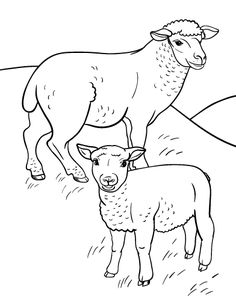 sheep coloring page 02 Projects to Try Pinterest Adult