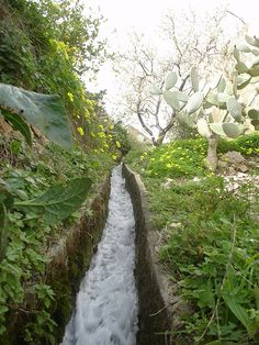 Acequias, traditional irrigation system devised by the Arabs.