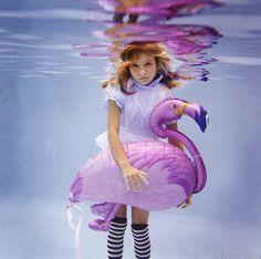 Un flamant rose à l'eau ! #photographie d'Elena Kalis