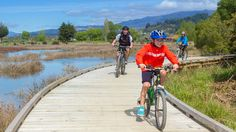 The new Tasman's Great Taste Trail in New Zealand takes cyclists to the region's wineries, breweries and cafes.
