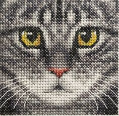Grey TABBY CAT, KITTEN, Detailed Face ~ Full counted cross stitch kit