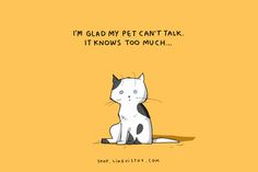 Let's Live Love Laugh » Celebrating Life » 15 Illustrated Truths About Cats