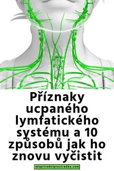 Příznaky ucpaného lymfatického systému a 10 způsobů jak ho znovu vyčisti. Good Advice, Detox, Healing, Workout, Work Out, Lifehacks, Therapy, Recovery