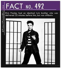 20 Amazing Quick Facts