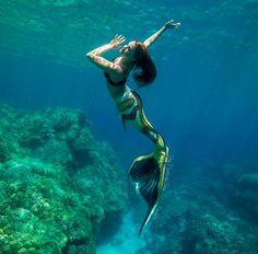 The Aries Witch♈ Finfolk productions silicone mermaid tail Mermaid Man, Mermaid Cove, Fantasy Mermaids, Mermaids And Mermen, Sirens, Realistic Mermaid, Real Life Mermaids, Silicone Mermaid Tails, Mermaid Under The Sea