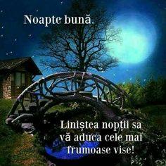 Good Night, Amazing, Images For Good Night, Be Nice, Photos, Italia, Nighty Night, Good Night Wishes
