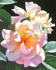 Artist Brian Davis: Sunlight Dance What an extraordinarily talented artist! Watercolor Rose, Watercolour Painting, Painting & Drawing, Watercolors, Art Floral, Botanical Art, Botanical Illustration, Plant Drawing, Flower Pictures
