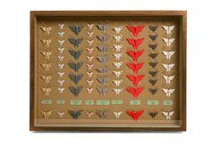 Origami Butterflies » Hannah Brown