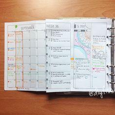 Planner Inserts on Pinterest   Plum Paper Planner, Kikki K and Planner ...