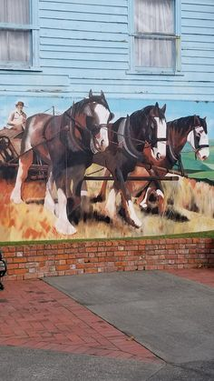 Most awesome frieze in Marton,  NZ #fulltimeauthor #KTBowes Countries Of The World, New Zealand, Horses, Pure Products, Country, Awesome, Animals, Animales, Rural Area