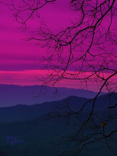 "surely this is where they got ""purple mountain's majesty""!! Purple Haze, Pink Purple, Magenta, Nature Scenes, Color Of Life, Different Colors, Beautiful World, Pretty In Pink, Color Combinations"