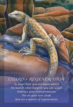Spirit Animal Totem, Animal Spirit Guides, Animal Meanings, Animal Symbolism, Spiritual Animal, Animal Medicine, Power Animal, Animal Magic, Oracle Cards