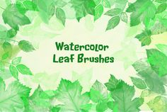 Watercolor Leaf Photoshop Brushes by Corner Croft on @creativemarket