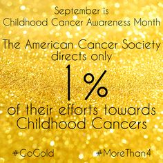 ACS, known to many from their largest fundraiser, Relay For Life, directs a mere 1% of their funds to Childhood Cancer research, compared to 15% for adult research. 28% of their funds go towards administration and fundraising costs.  ----------------------------- September is Childhood Cancer Awareness Month. I will continue to post one fact about Pediatric Cancer per day to help raise awareness. Please join me and ‪#‎GoGold‬ to help support these little fighters! ‪#‎MoreThan4‬…