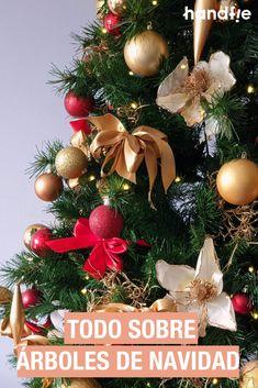 ¡Nos encantan los árboles de Navidad! Pero... ¿Sabes los tipos que hay y cómo elegir el que más se adapta a tus necesidades? ¡Te lo contamos! 🎄 #Handfie #DIY #Navidad #ArbolDeNavidad #ArbolesDeNavidad #Decoracion #ArbolNatural #ArbolArtificial #AbetoNavideño Christmas Wreaths, Christmas Tree, Diy, Holiday Decor, Ideas Para, News, Preppy Christmas, Red Christmas, Christmas Ornaments