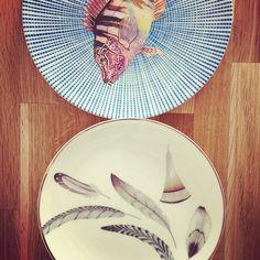 Pocas cosas nos gustan más que un plato redondo con un animal.