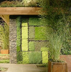 Urban roof terrace designed by New York exterior designer, Rebecca Cole. The wall is planted with succulents, grasses, and ajuga and was inspired by Mondrian.