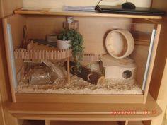 Allet für den Hamster Allet for the hamster Dwarf Hamster Cages, Hamster Bin Cage, Cool Hamster Cages, Gerbil Cages, Diy Guinea Pig Cage, Hamster Toys, Robo Dwarf Hamsters, Hamster Stuff, Diy Hamster House