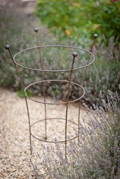 Buy Garden Trading Barrington Flared Plant Support from our Decorative Garden Accessories range at John Lewis & Partners. Garden Shop, Dream Garden, Garden Art, Garden Plants, Garden Design, Vegetable Garden, Garden Projects, Garden Tools, Garden Plant Supports