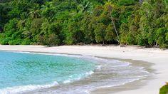 Costa Rica. Plages du Pacifique. Ici, en bordure du parc de Manuel Antonio.                                                                                                                                                                                 Plus