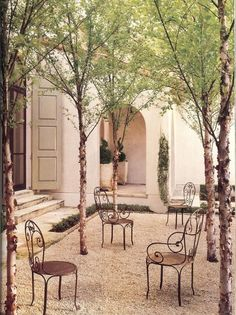Simple courtyard with trees