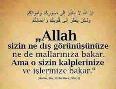 Beğeniyle ve severek okunulan yazı ve hikayeler: Dış Görünüş Yanıltır (Mesnevi'den Bir Menkıbe) Allah Islam, King Of Kings, Islamic Quotes, Instagram Posts, Istanbul
