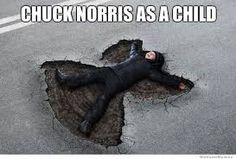 Image result for cat norris meme