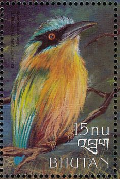Amazonian Motmot stamps - mainly images - gallery format