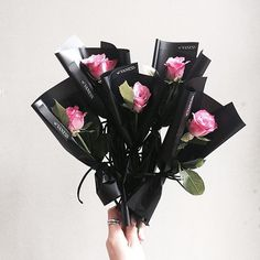 Elegant pink roses, wrap with black simple carton • • #vanessflower