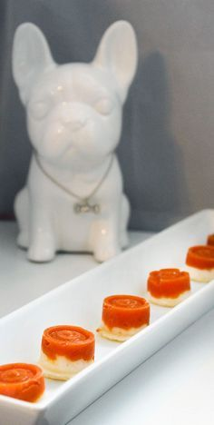 Pumpkin Yogurt Easy Frozen Dog Treats Recipe