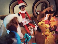 Elf on the Shelf playing tic tac toe with marshmallows and her friends!