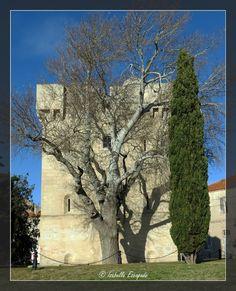 PORT ST LOUIS DU RHONE Site - http://mistoulinetmistouline.eklablog.com Page Facebook - https://www.facebook.com/pages/Mistoulin-et-Mistouline-en-Provence/384825751531072?ref=hl