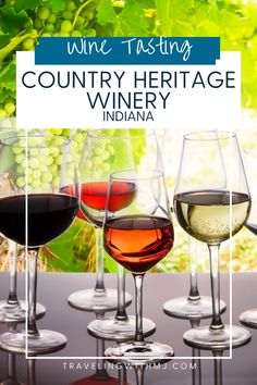 Country Heritage Winery is set on an Indiana farm that has a 100+ year family heritage. In this wine tasting we sip a 2019 Traminette and a 2016 Marquette, both grapes we were not familiar with. Top Travel Destinations, Wineries, Wine Tasting, Luxury Travel, Travel Around, Mj, Travel Guides, Trip Planning, Indiana