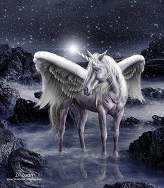 Unicorn Pegasus by zizuan on DeviantArt Unicorn And Fairies, Unicorn Fantasy, Unicorn Horse, Unicorn Art, Fantasy Art, Unicorn Poster, Mythological Creatures, Fantasy Creatures, Mythical Creatures