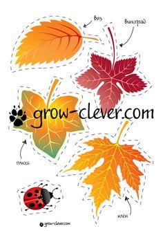 fall19.jpg (565×800)