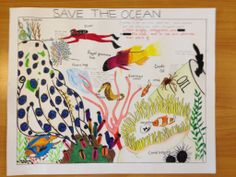Wazeena Mohamed - Age 14 Drawing Competition, Ocean Day, Marine Conservation, Oceans Of The World, Crude Oil, Age, Drawings, School, Sketches