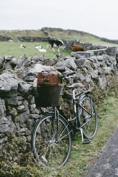 corinaesquivel:  Aran Island Ireland  My blog posts