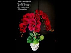 EP: 174 ฟาแลนนอปซิส (Phalaenopsis) How to make nylonflower by ployandpoom Nylons, Pipe Sizes, Crochet Flowers, Red Green, Make It Yourself, Plants, How To Make, Youtube, Home