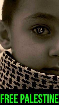 .sweet babies of Palestine