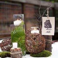 """Being the artist that she is, Katie designed graphic trees to use for the table numbers. Each """"table tree"""" hung from a tiny branch."""