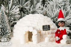 Marshmallow Igloo | Elf on the Shelf Ideas