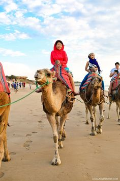 20. Ride a Camel  There are plenty of activities for adventurers. You can see the city via hot air balloon, go hiking, climbing, find zip lines, or go horseback or camel riding.  (21 Fascinating Things to Do in Marrakech Morocco).