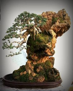 Carving Rock for a Penjing