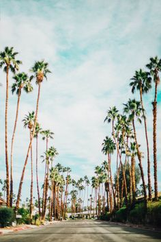 Photo Diary: Palm Springs, CA