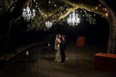 Chandelier's in the oak tree at Paradise Ridge winery