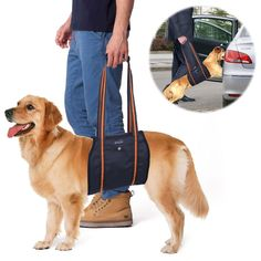 Dog Support Harness, PETBABA Mobility Rehabilitation Sling Lift Harness with Handle for K9 Canine Aid Injury and Arthritis -- Click image to review more details.