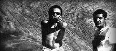 No dia 22 de outubro, quinta-feira, às 19h, a banda Lacertae se apresenta no Centro Cultural São Paulo (CCSP). A entrada é Catraca Livre. O grupo apresenta música regional marcada pela influência da bossa nova e da capoeira, misturada às sonoridades de Jimi Hendrix, Hermeto Pascoal, Tom Zé, entre outros.