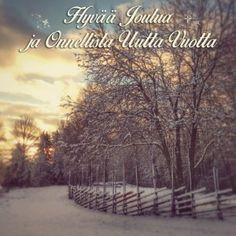 Kauniita kotimaisia joulukortteja 50 senttiä kappale,. kortit kuvattu Salossa, Turussa ja Koskella http://www.salonsydan.fi/tuote-osasto/kortit/ #Turku #salo #Koski #joulu Joulukortti