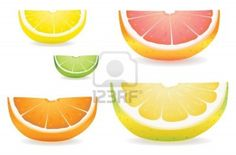 10284776-a-selection-of-citrus-fruit-slices-in-proportional-sizes-illustrated-are-lemon-lime-orange-pink-grap.jpg (400×263)